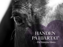Handen på hjärtat – för hästens bästa