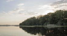 Klartecken att använda Ringsjön för bevattning