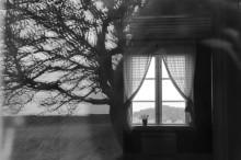 Påminnelse: Leviatans regissör Andrej  Zvjagintsev hyllar Tarkovskij under Bergmanveckan