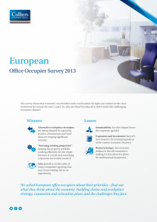 EMEA Occupier Survey 2013