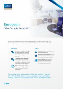 EMEA Occupier Survey 2013