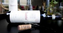 Vinmakarhelg med Alfiero Boffa på Färna