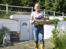 Bygge jordkjeller i betong - Inspirert