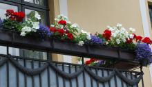 Blomster i rødt, hvitt og blått til maifesten