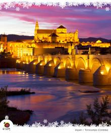 En resa till Spanien, en perfekt julpresent.