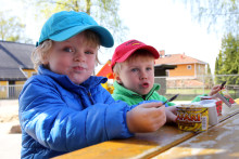 Safariyoghurt med müslistjerner