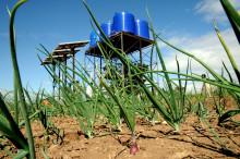 Folkekirkens Nødhjælp klar til at holde øje med ny dansk landbrugsfond