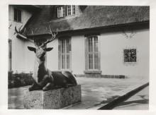 Eppli versteigert Fotoalbum über Landsitz Görings