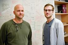 Ultraljud kan förbättra undersökning av skadade muskler