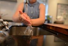 MatStart med lysende hygieneeksperiment på Miniøya
