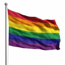 Danderyds sjukhus flaggar för Pride