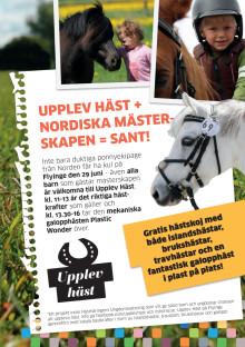 Upplev häst du också på Nordiska mästerskapen på Flyinge
