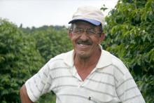 Småskaliga kaffebönder ökade sin produktion
