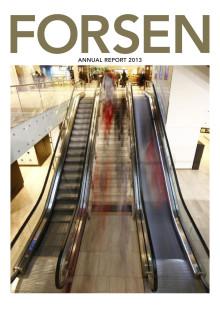 Forsen Projekt Annual Report 2013