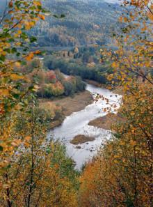 Näst högsta flödena på trettio år i Klarälven