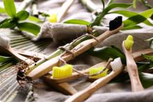 Succé för miljövänliga bambutandborstar - Midsona och The Humble Co i nytt samarbete