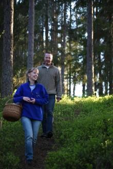 Vandra i Glasriket nordost – en del av Småland