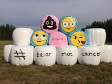 Balar mot cancer blir uppmärksammad konst