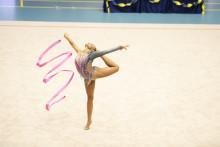 Nordiska mästerskapen i rytmisk gymnastik på hemmaplan