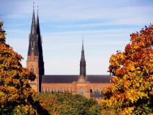 Pilgrimsvandra mellan Stockholm och Uppsala