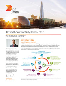 DS Smith Sustainability review executive summary 2018