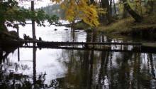 Landskapsforum 2018 den 15–16 oktober: Vattnet i det brukade landskapet