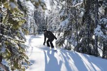 Flere og flere danskere vil stå vildt på ski