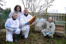 Apiary opportunities for busy beekeepers