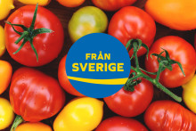 9 av 10 svenska tomater kommer från odlingar som värms upp med förnybar energi