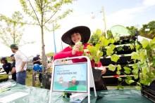 Lyckad Sommarfest i Kroksbäcksparken gav 33 000 kronor till Barncancerfonden