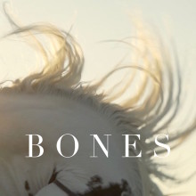 Saie Saie's new single 'Bones' is out now on Spotify!