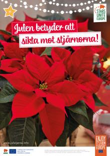 POS Poster Julstjärna 2018 röd