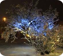 Så mycket (lite) kostar julljusen fram till tjugondagknut!