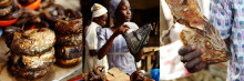 Stor interesse for norsk fiskeeksport til Vest-Afrika