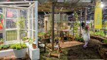 Trädgårdsinspiration - årets idéträdgårdar är utsedda