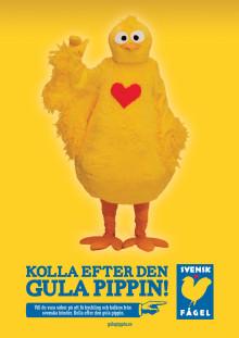 Nu ska Sverige kolla efter den Gula Pippin