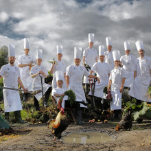 Kocklandslaget till Nordstan inför Culinary Olympics