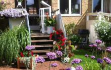 Hyresgästerna skriver om sina hem i Stena Fastigheters nya blogg