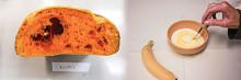 Mikroalg berikar mat med protein och antioxidanter