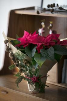 Fira Julstjärnans Dag på Åhlens City i Stockholm
