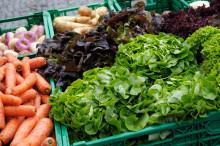 Nordiska näringsrekommendationer lanseras idag