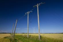 Kastvindar på elmarknaden
