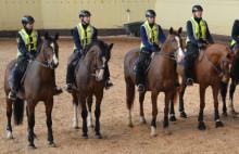 Hästkortege genom Karlshamn inleder Hästmässa