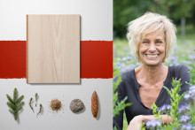 Invitation to press briefing: Bjelin celebrates nordic woods at the Stockholm Furniture & Light Fair 2020