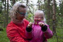 Lapsikin rauhoittuu luonnossa