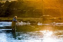 Flugfiskeprofilen visade vägen till Crambys fiskburgare