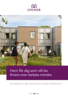 Nybyggnad i Lingenäs, Kristianstad