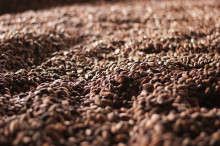Clarion Hotel Post bjuder på Fairtrademärkt morgonkaffe den 16 oktober