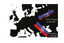 Nästan bara män migrerade från stäpperna i öster till Europa för 5,000 år sedan
