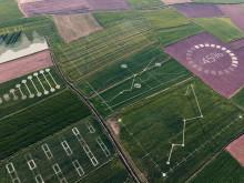 Yara og IBM samarbeider om fremtidens landbruk